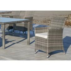 Fauteuil À Manger Avec Coussin 2X Oman-3+Coj/3D Finition Resine Tressee Grise Tissus Ecru Alba Dralon